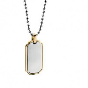fredbennett Stainless Steel Dog Tag & Chain. N4005