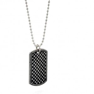 fredbennett Stainless Steel Dog Tag & Chain. N4006